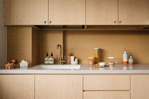 plywood apartment Monocot