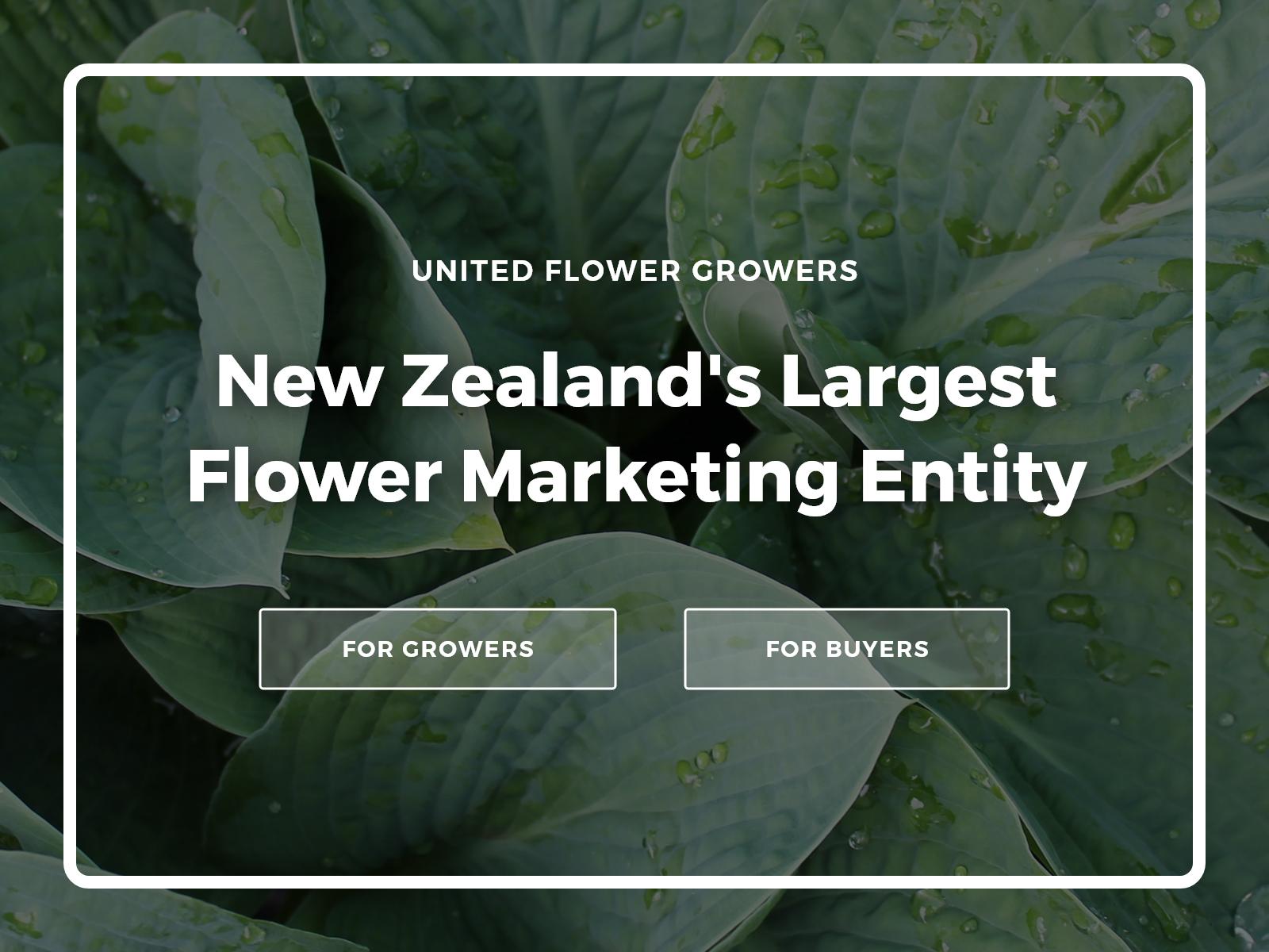 United Flower Growers - Marketing Website & Member Platform