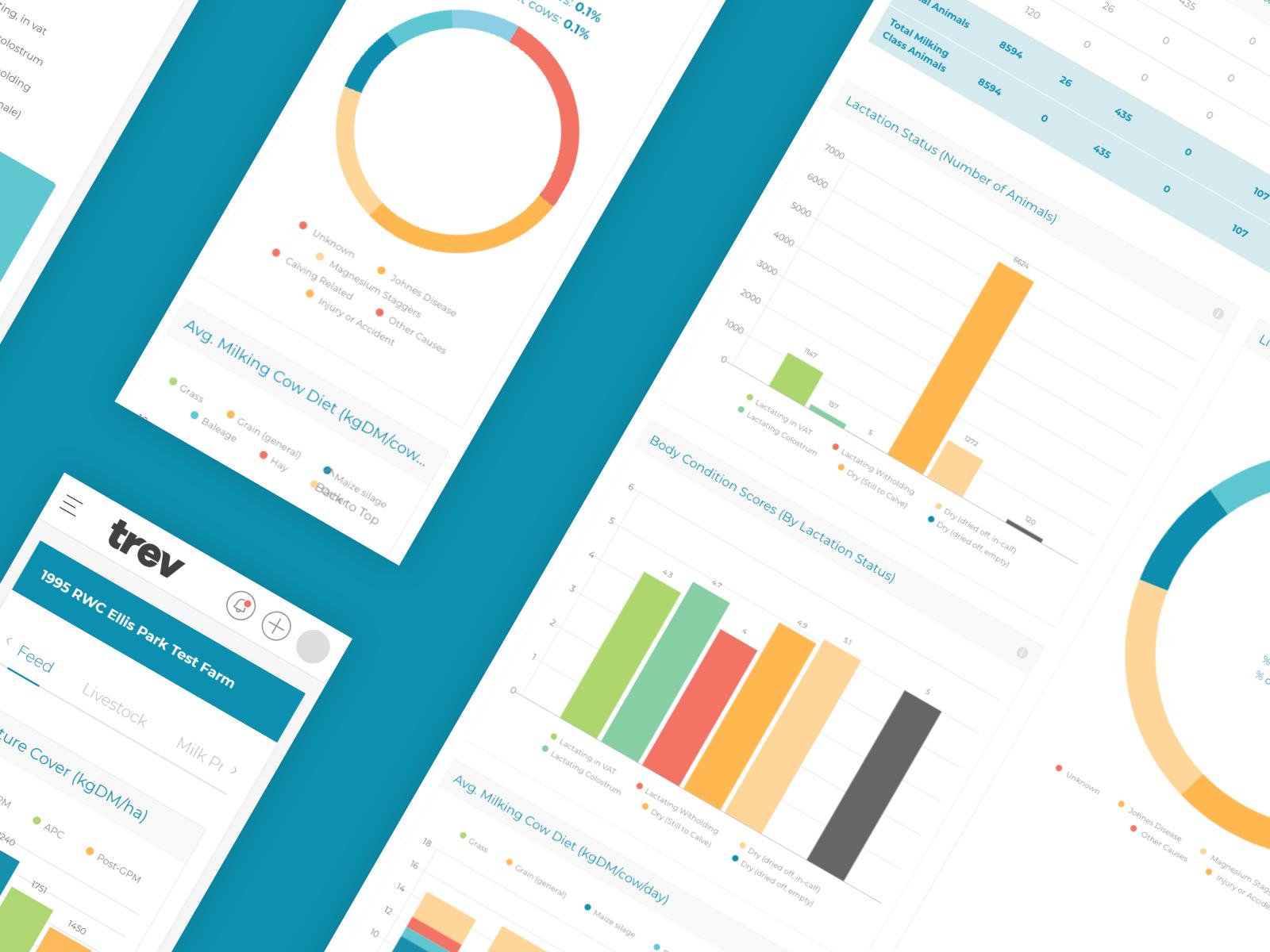 Trev - Insights & Analytics Platform