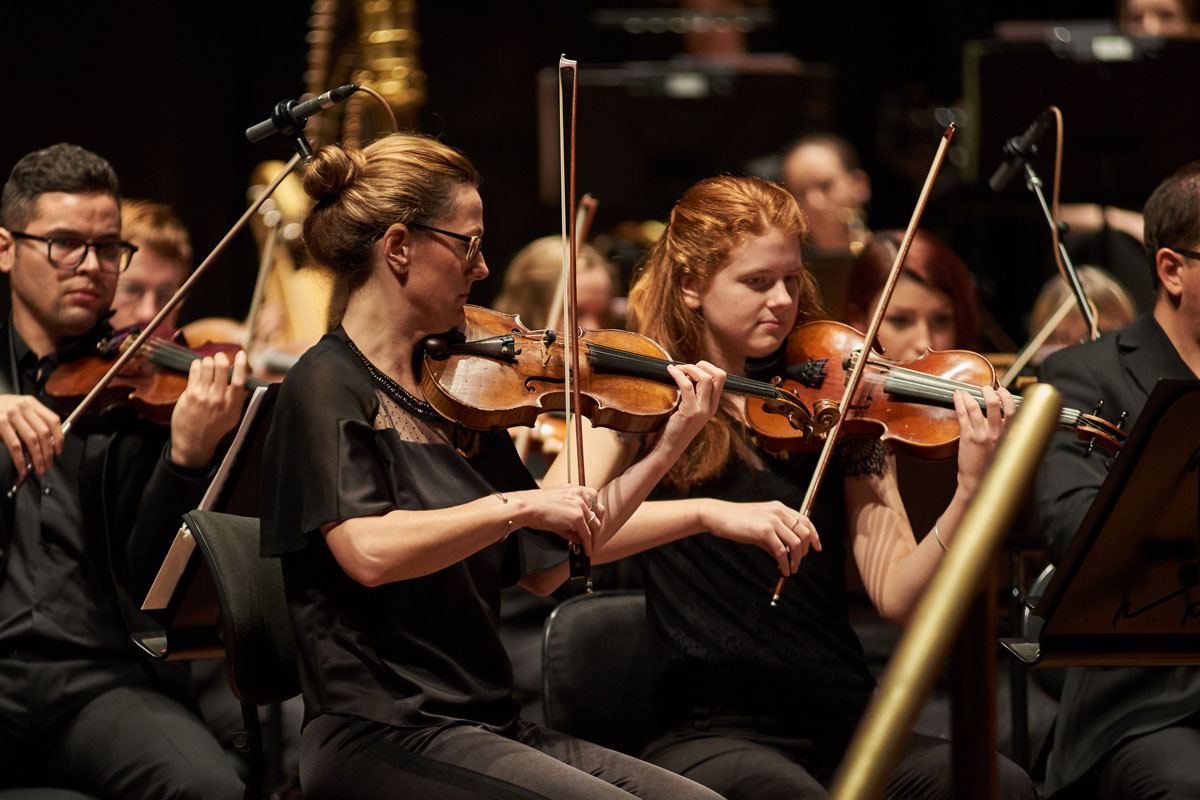 MSO Schools Side by Side 1200x800