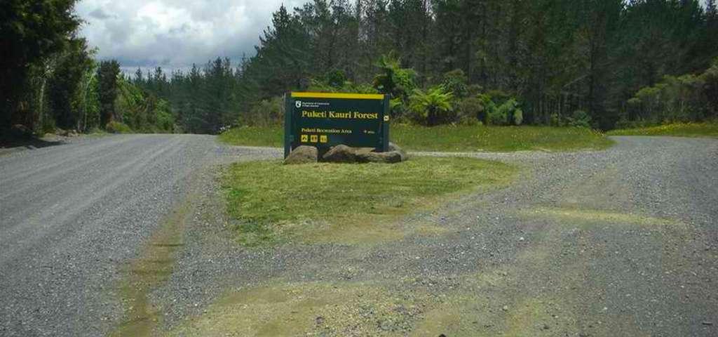 Puketi Recreation Area Campsite