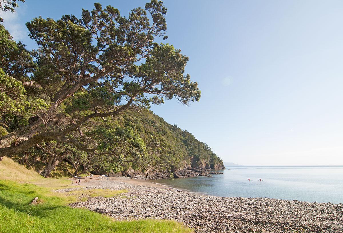 Stony Bay Campsite