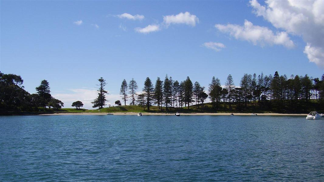 Motuihe (Island) Campsite