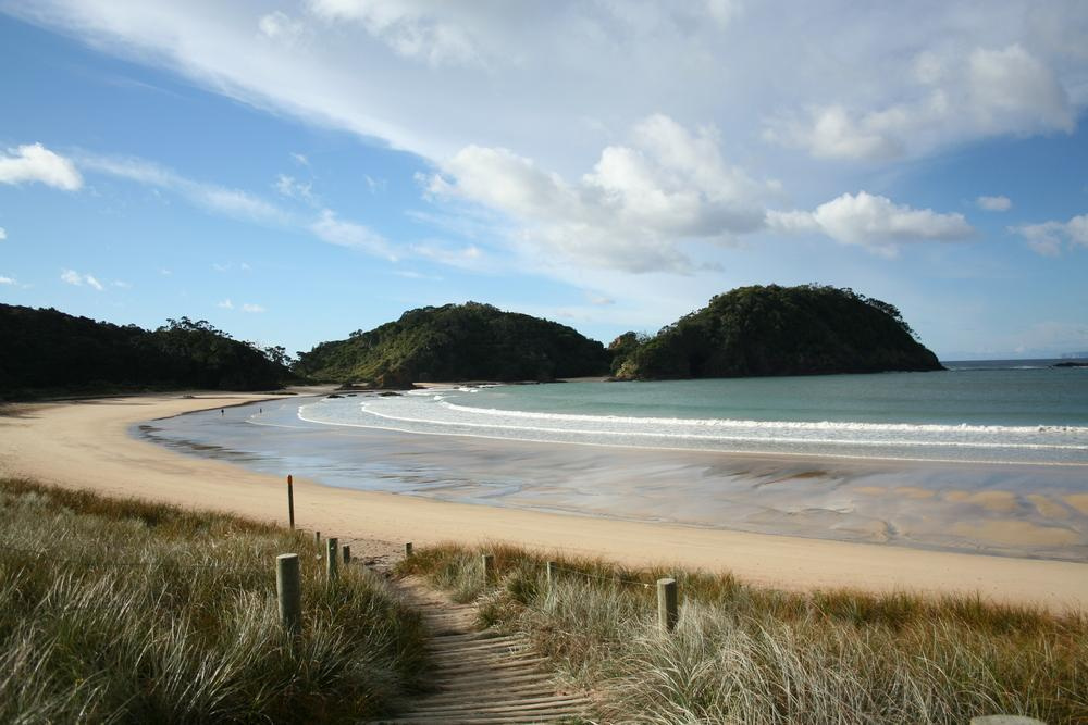 Ruakaka Beach Reserve Camp