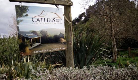 Catlins Mohua Park Eco Accommodation