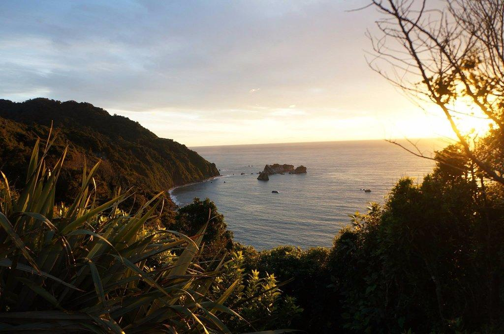 Auckland i-SITE | Knights Point Lookout