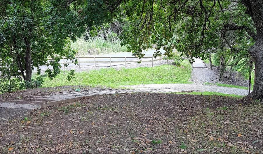 Two Ponga Park
