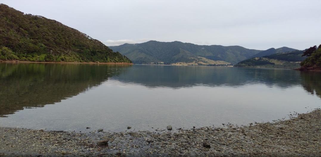 Picnic Bay Campsite