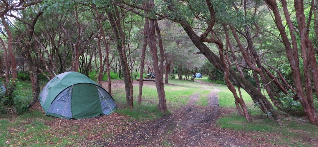Onetahuti Bay Campsite