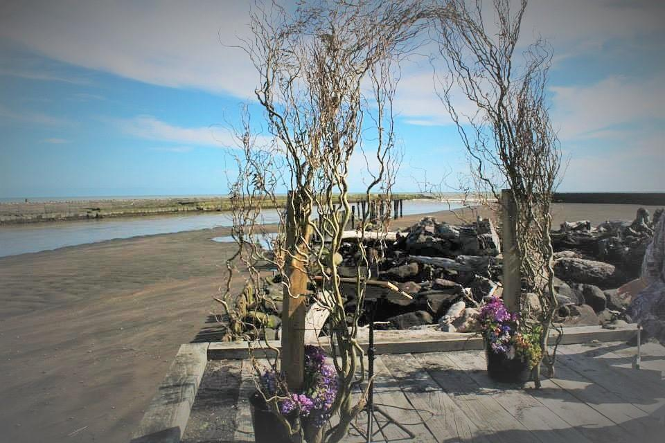 Patea Beach Motor Camp