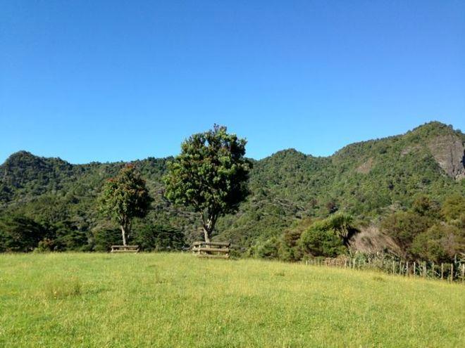 Ambury Park Campground