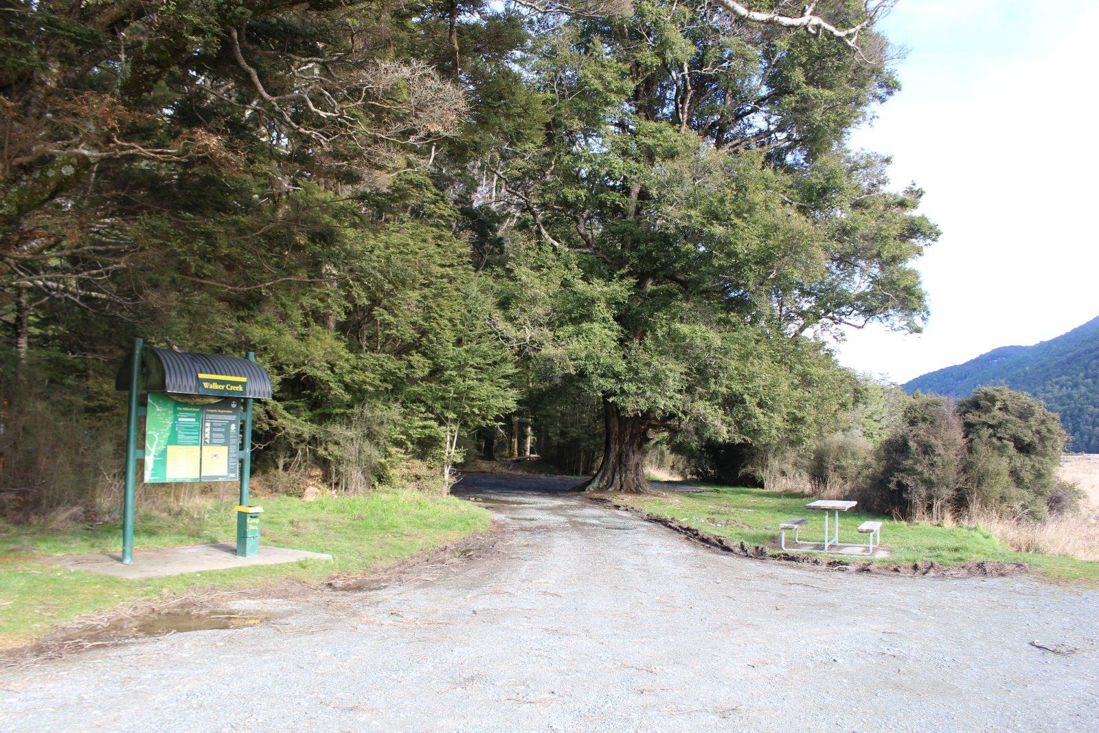 Walker Creek Campsite