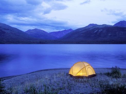 Cable Bay Campsite