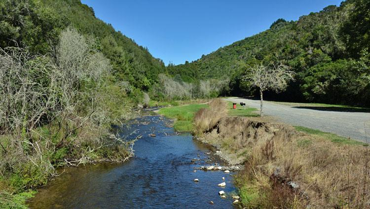 Mangaokewa Reserve