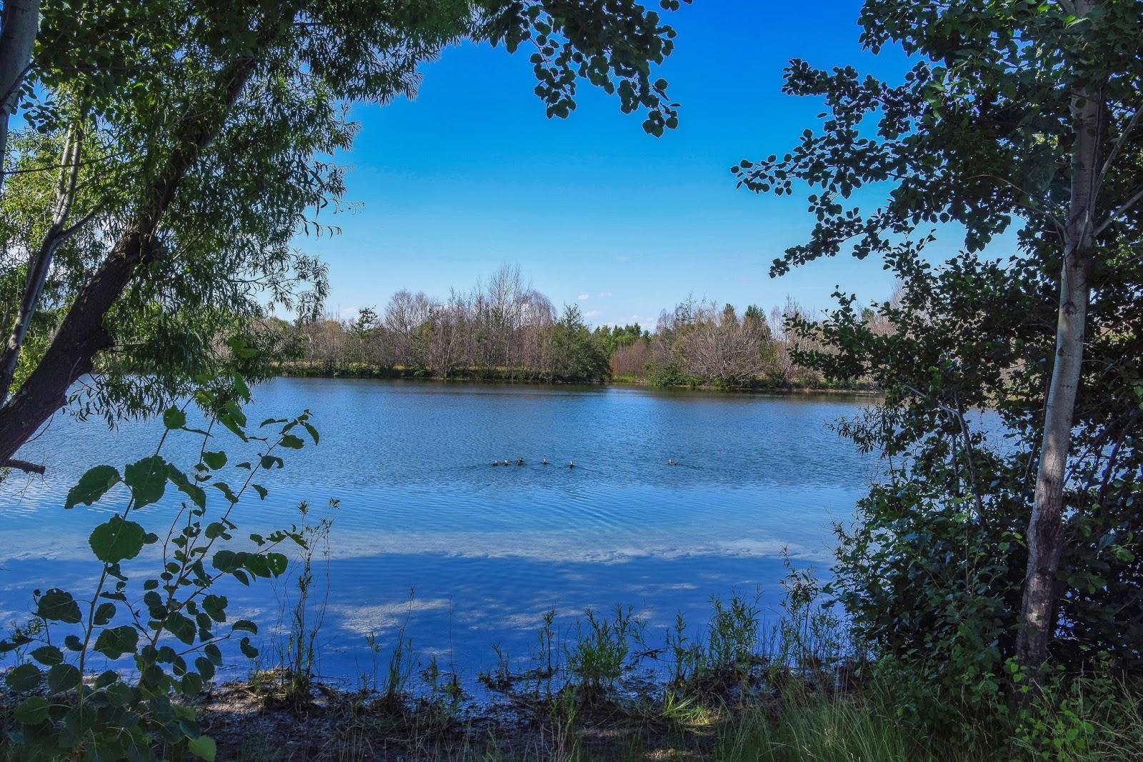 Lake Poaka Campsite
