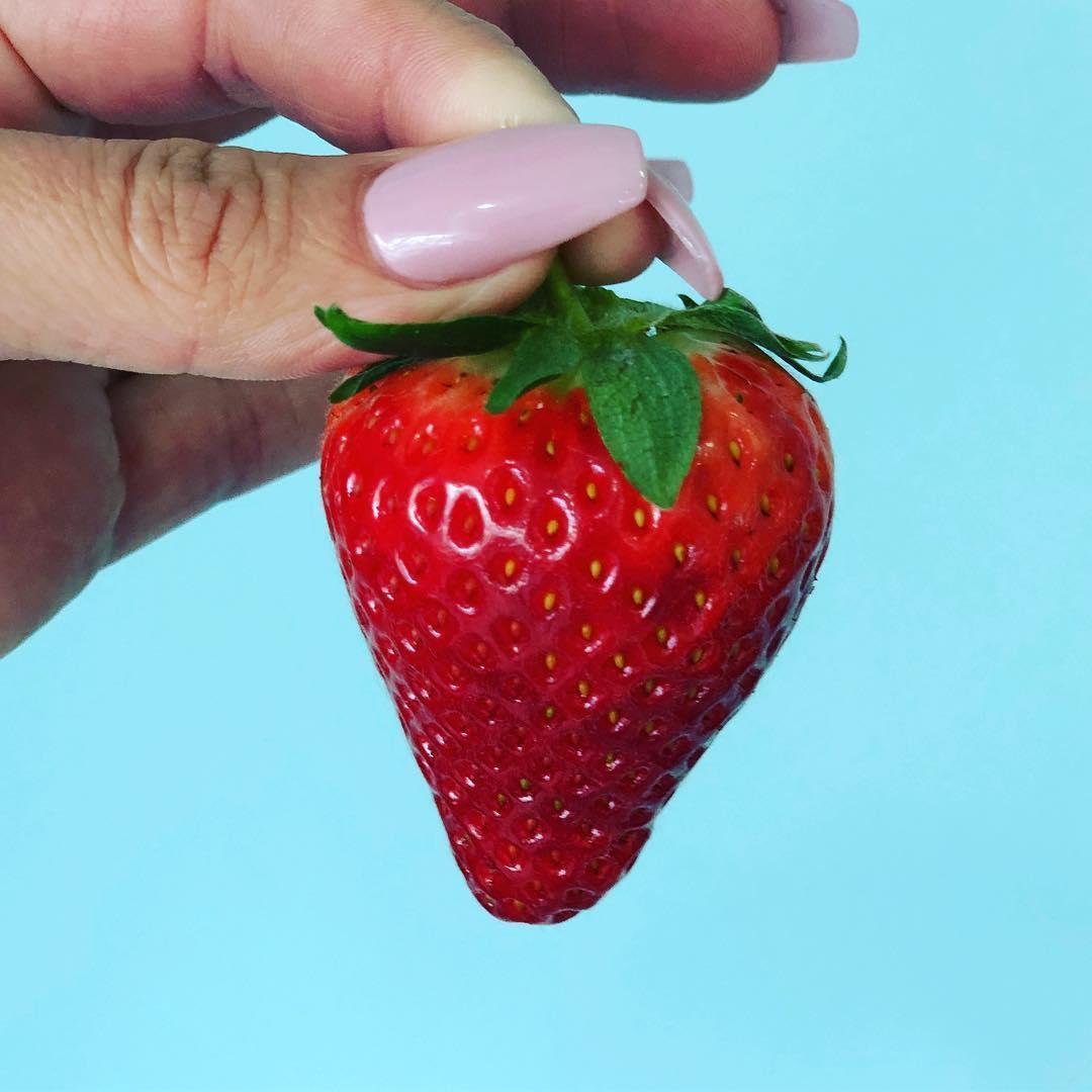 Phil Greig Strawberry Garden's