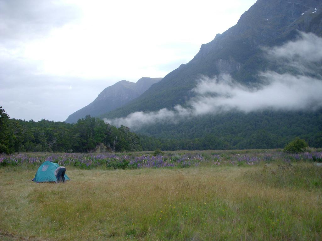 Mackay Creek Campsite
