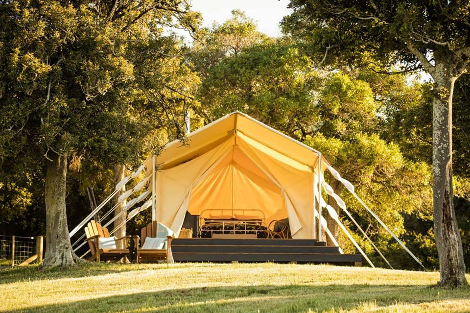 Lavericks Bay - Canopy Camping