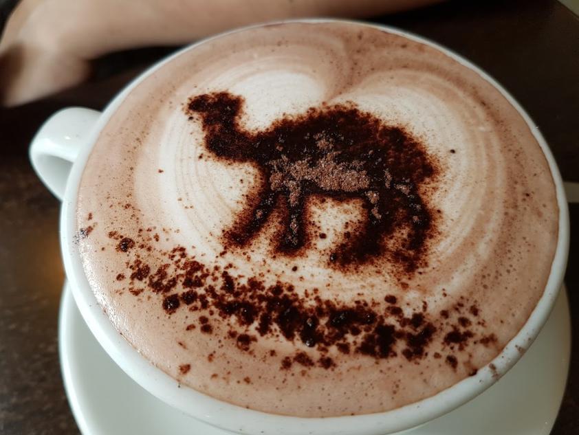 Fat Camel Cafe