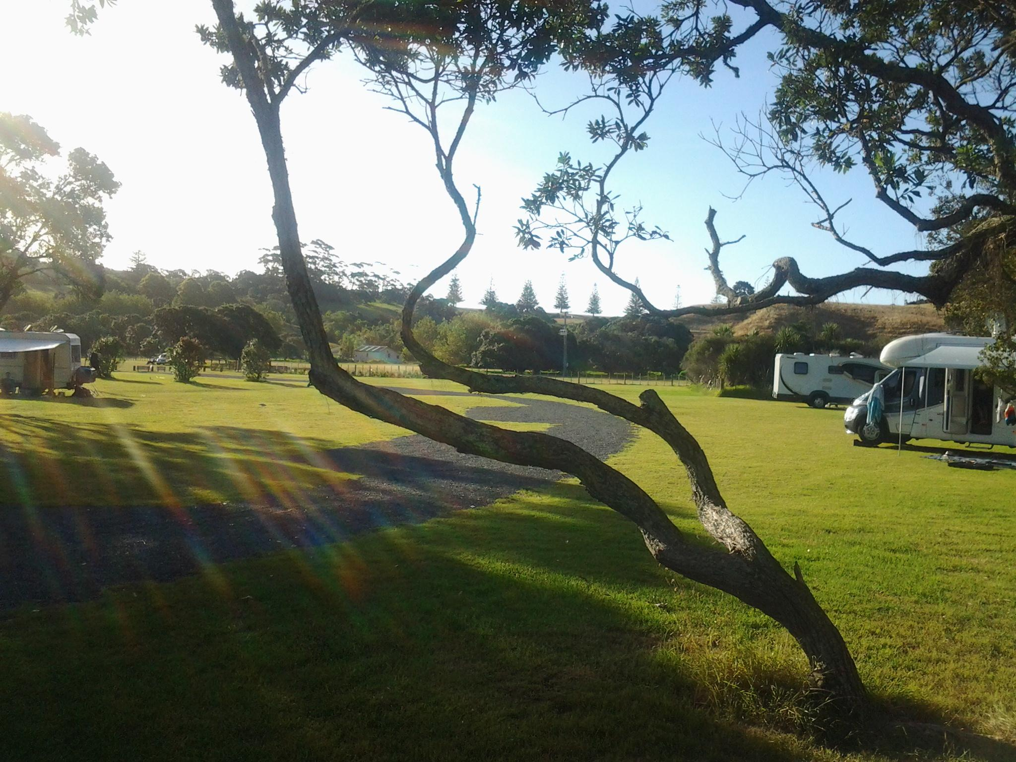 Te Haruhi Bay Campground