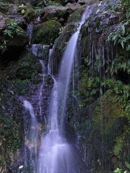 Jock Atkins Waterfall