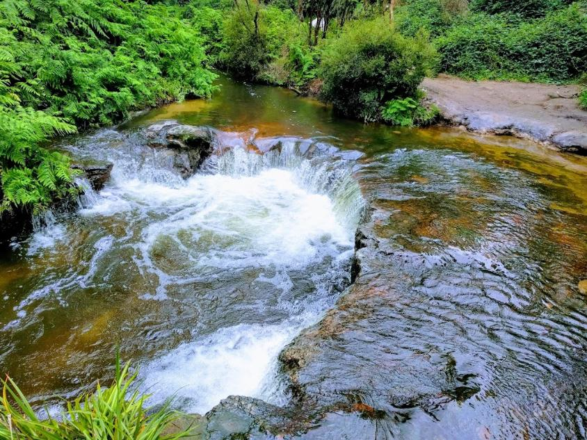 Kerosene Creek Hot Pools Walk