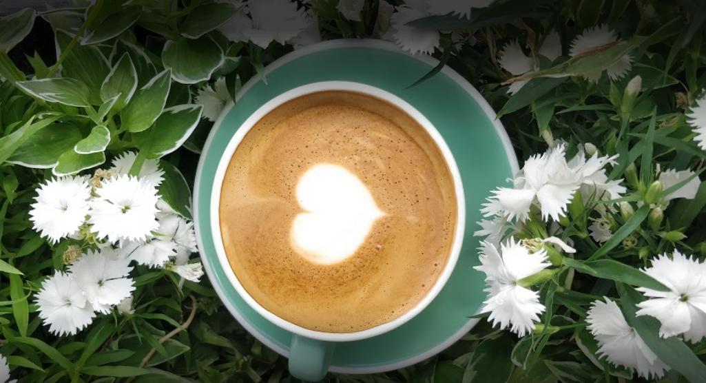 Cotti Cafe