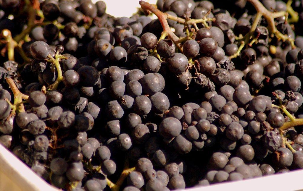 Haythornthwaite Wines