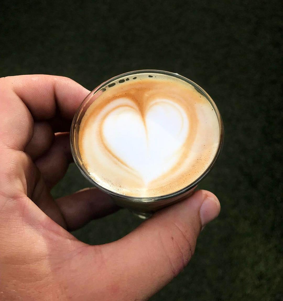 Wolf Coffee