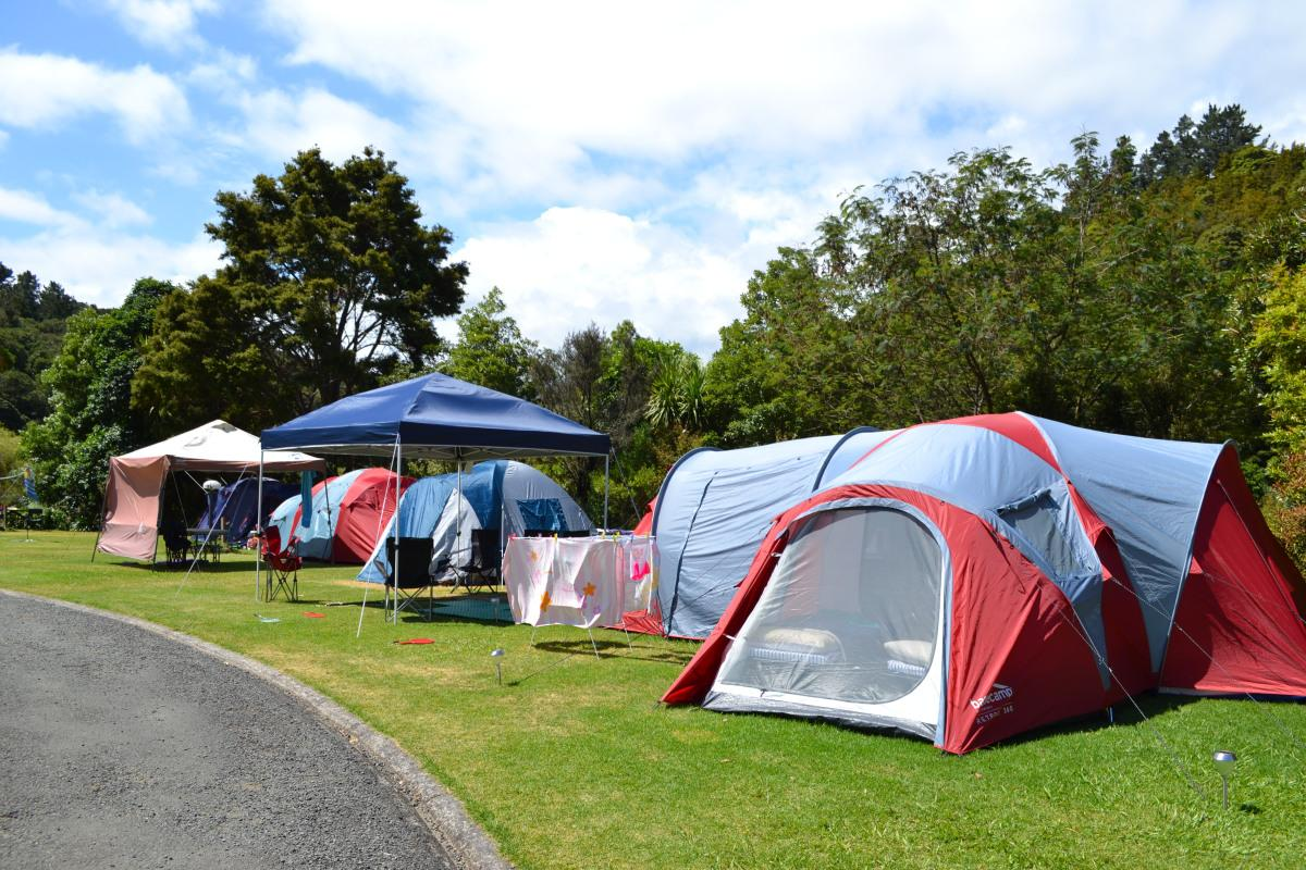 Kauri Coast TOP 10 Holiday Park