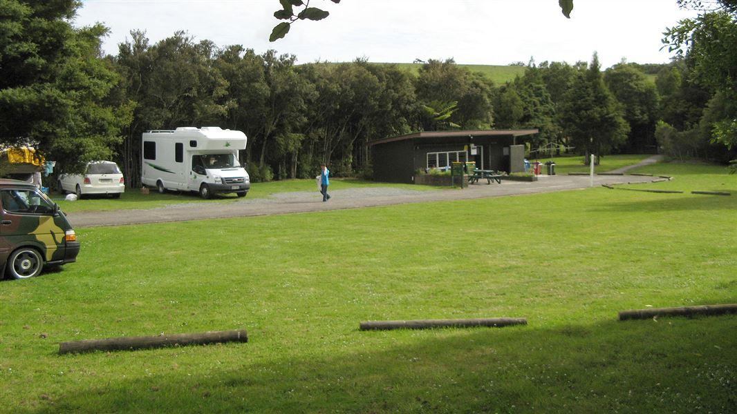 Trounson Kauri Park Campground