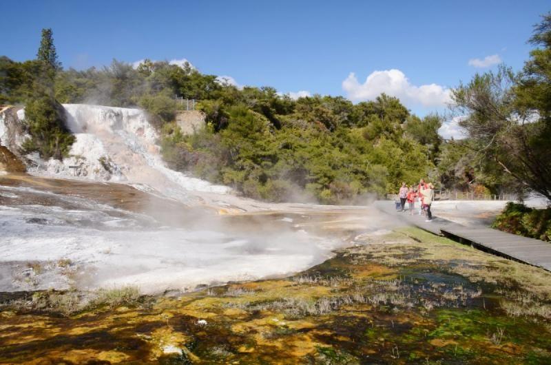 Ultimate Thermal Safari
