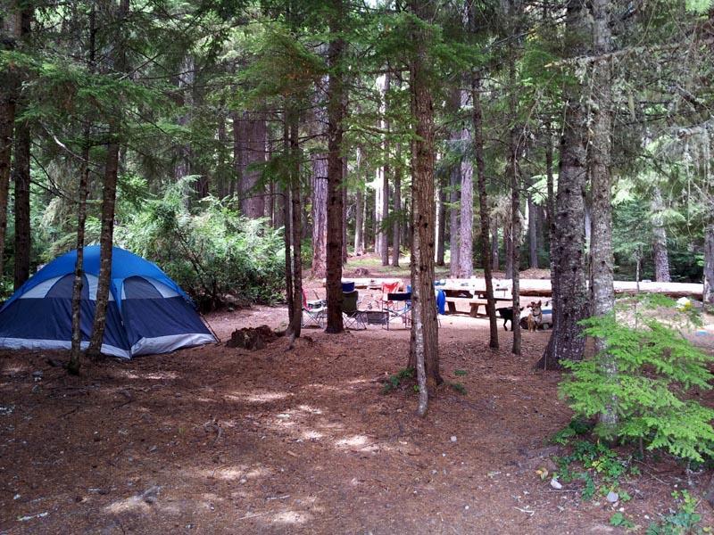 North Arm Campsite
