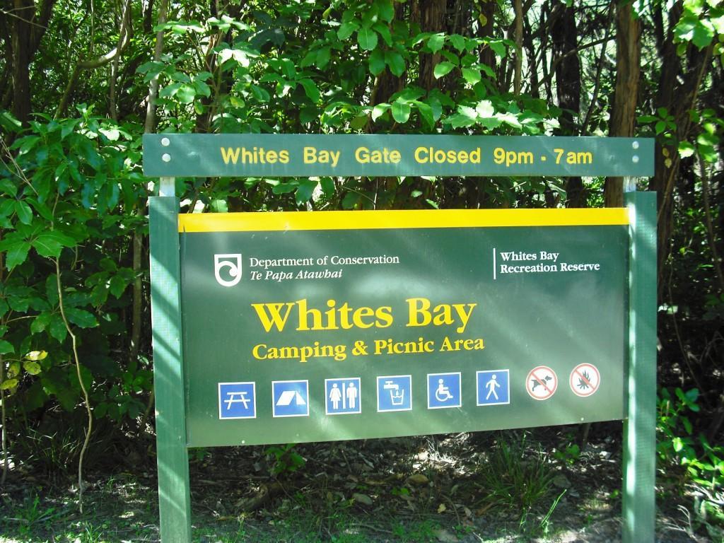 Whites Bay Campsite