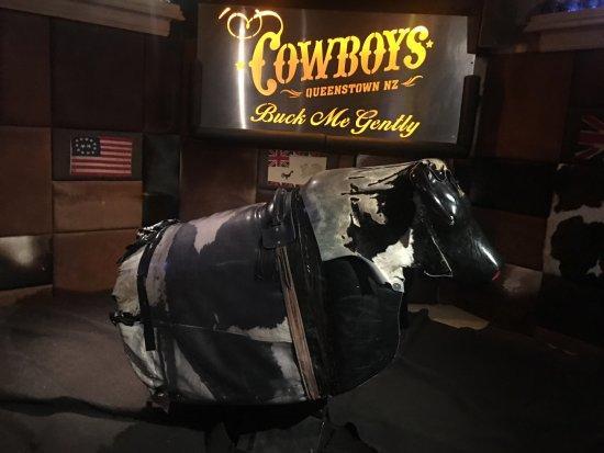 Cowboy Qt Ltd