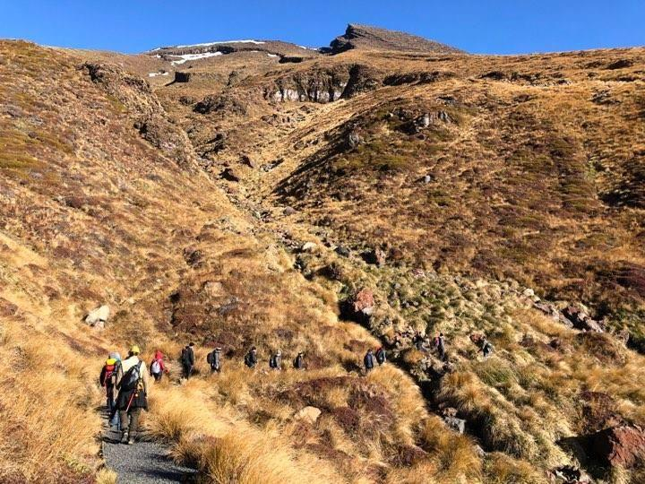 Adrift Tongariro - Premium Tongariro Alpine Crossing Guided Walk
