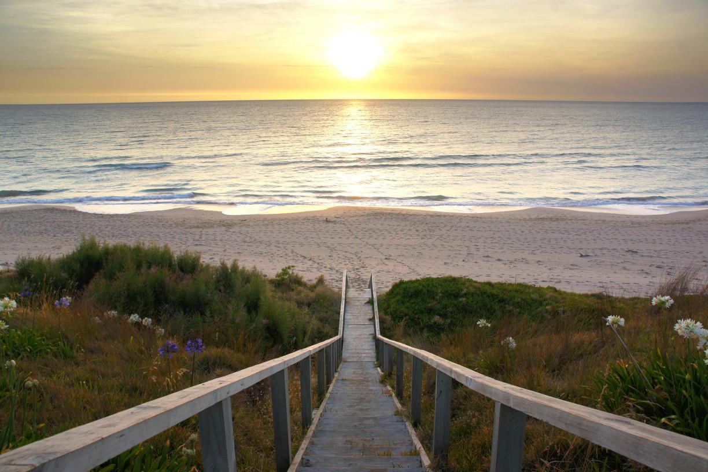 Wainui Beach