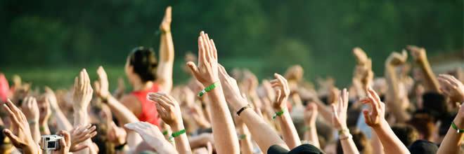 Person, Crowd, Concert