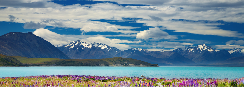 Nature, Mountain Range, Outdoors, Mountain, Scenery, Plant, Ice, Land, Flower, Vegetation