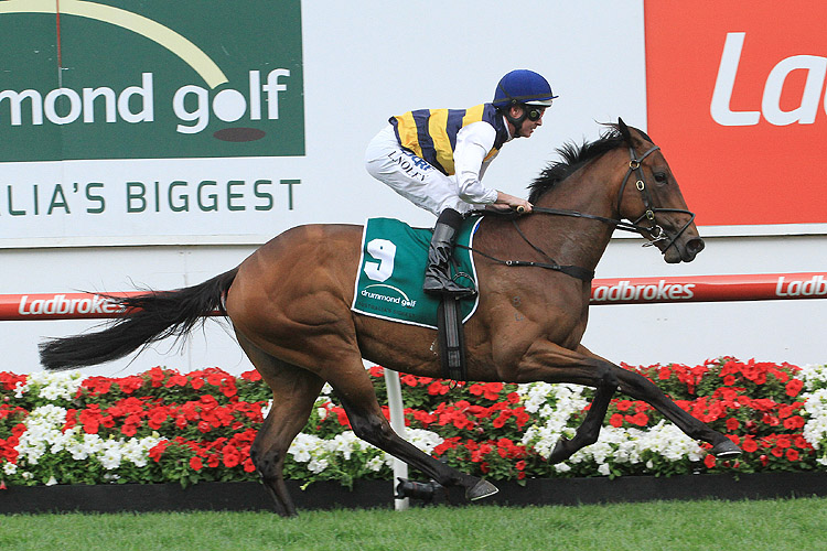Aloisia was very fast in the Moonee Valley Vase