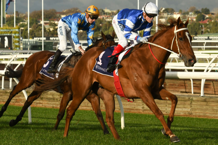 GYTRASH winning the A.R. Creswick Stakes during Melbourne Racing at Flemington in Melbourne, Australia.
