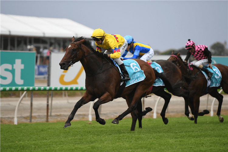 VEGA ONE winning the $1m Pacific Fair Magic Millions Cup.