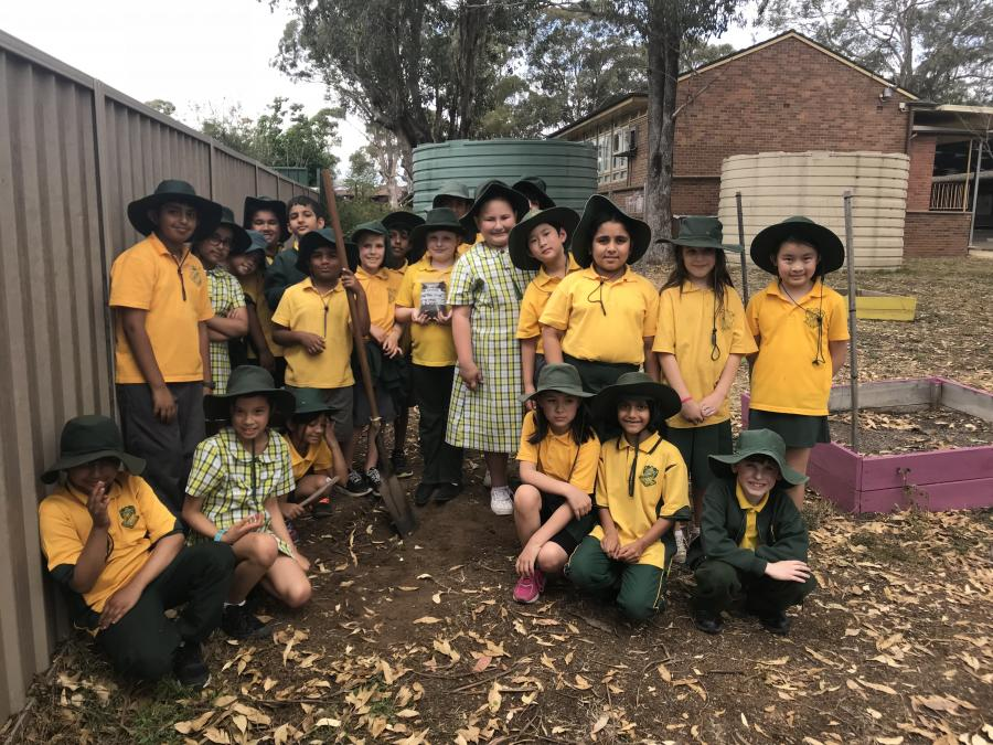 Glenfield Public School