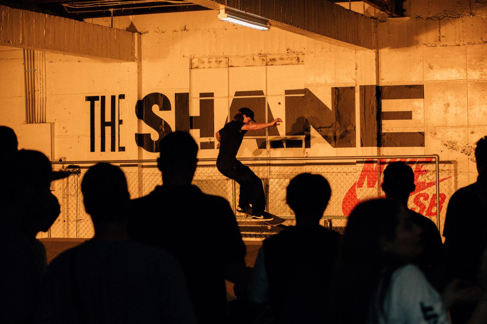 Web space between nike sb the shane 65