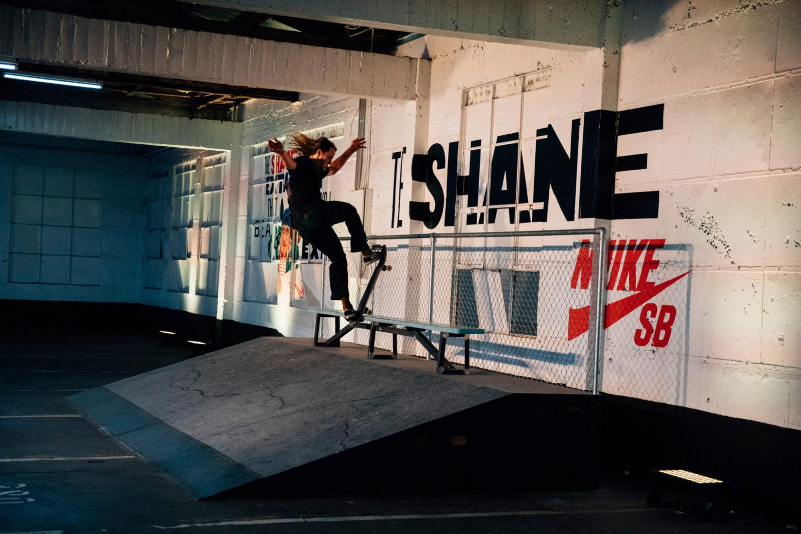 Web space between nike sb the shane 9
