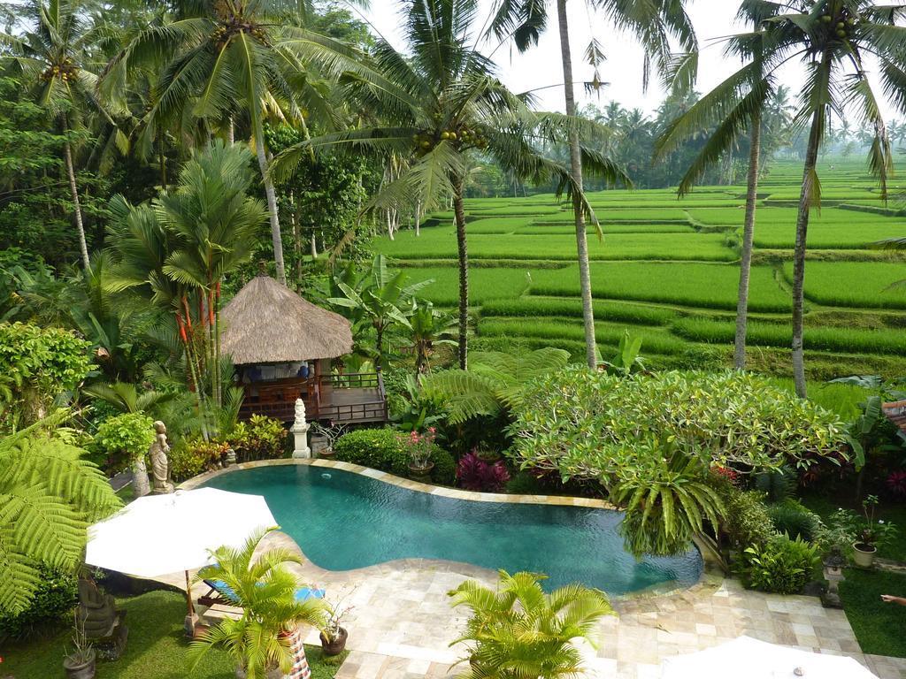 Villa Orchid Bali