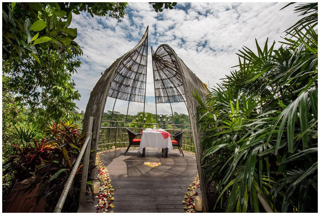 Bird Nest Romantic Dinner in Ubud
