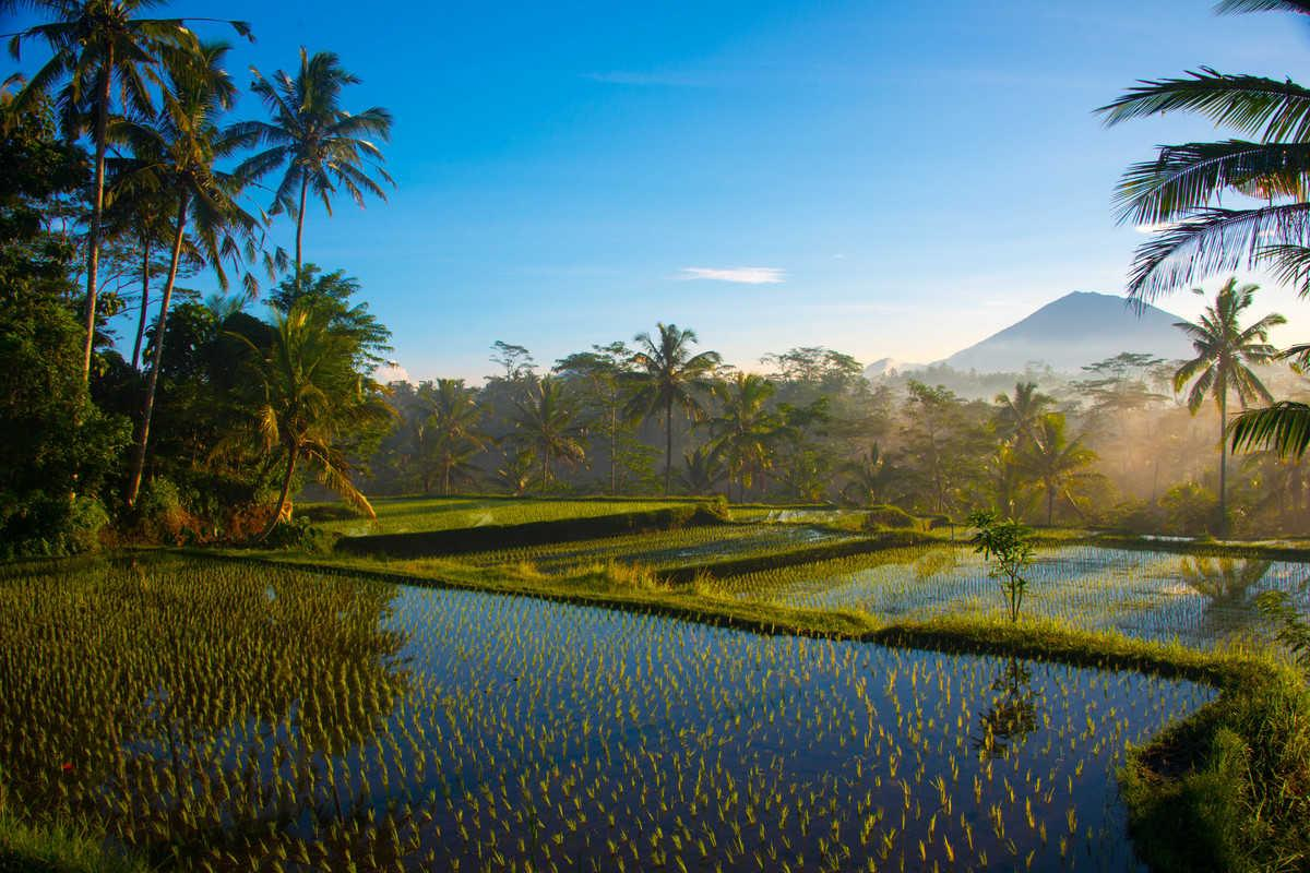 Full Day  Photography Tour - Agung Sunrise, Balinese Life