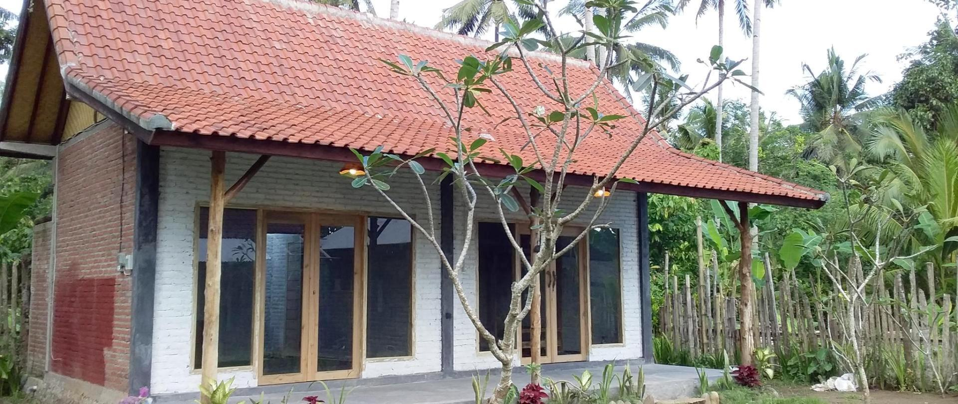 Jungle Surf House - Surf & Stay