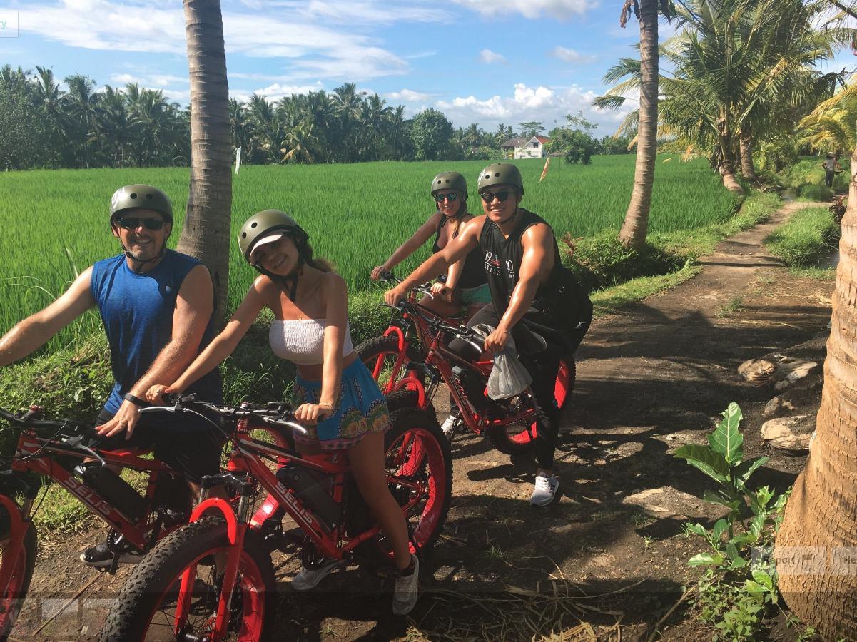 Half-Day Fat-Tire E-Bike Tour in Ubud